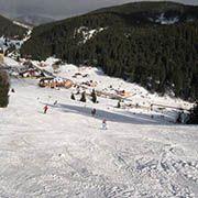 Ski Mlynky