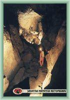 Jaskinia martwych nietoperzy