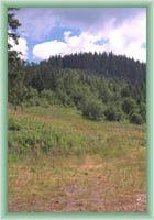 Przełęcz Przehyba