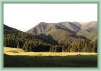 Jałowiecka Dolina